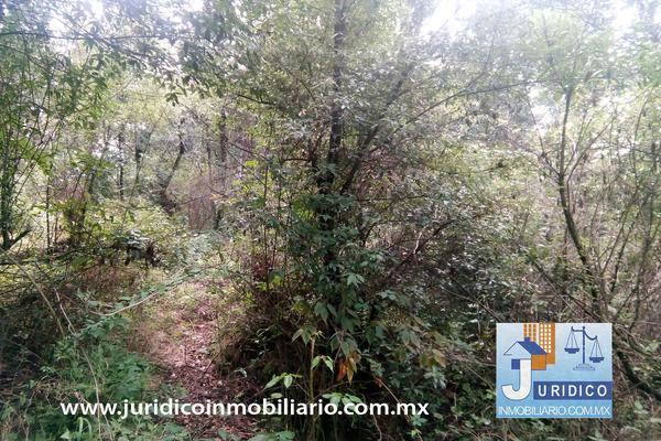 Foto de terreno habitacional en venta en  , san jacinto, atlautla, méxico, 14374200 No. 19