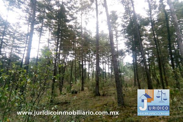 Foto de terreno habitacional en venta en  , san jacinto, atlautla, méxico, 14374200 No. 21