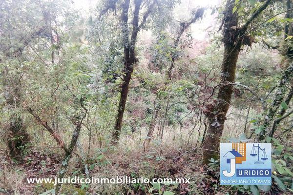 Foto de terreno habitacional en venta en  , san jacinto, atlautla, méxico, 14374200 No. 22
