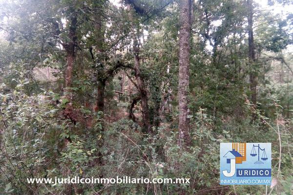 Foto de terreno habitacional en venta en  , san jacinto, atlautla, méxico, 14374200 No. 23