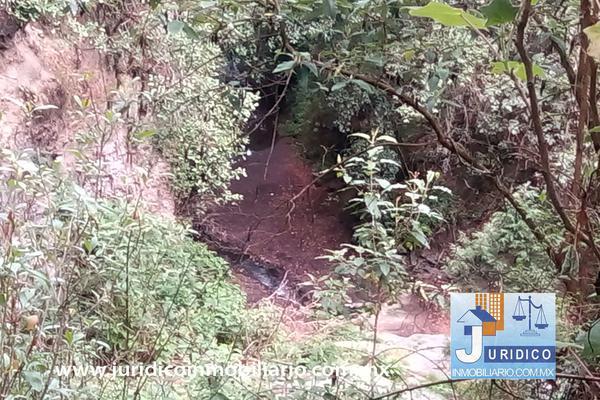 Foto de terreno habitacional en venta en  , san jacinto, atlautla, méxico, 14374200 No. 24