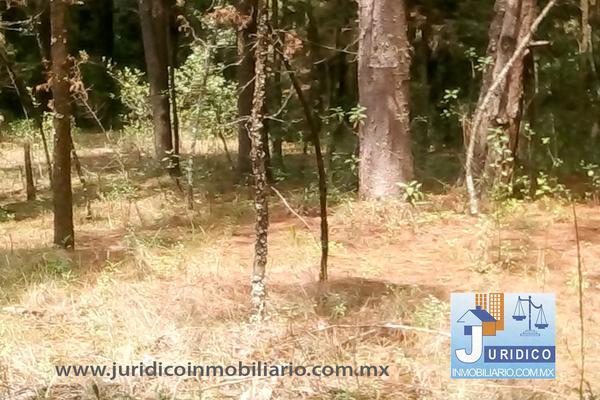 Foto de terreno habitacional en venta en  , san jacinto, atlautla, méxico, 14374200 No. 25