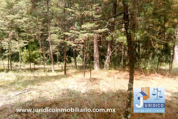 Foto de terreno habitacional en venta en  , san jacinto, atlautla, méxico, 14374200 No. 26