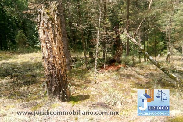 Foto de terreno habitacional en venta en  , san jacinto, atlautla, méxico, 14374200 No. 27