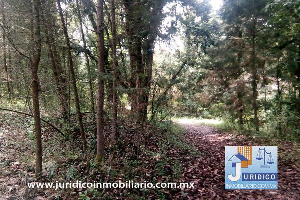 Foto de terreno habitacional en venta en  , san jacinto, atlautla, méxico, 14374200 No. 28