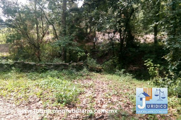 Foto de terreno habitacional en venta en  , san jacinto, atlautla, méxico, 14374200 No. 29