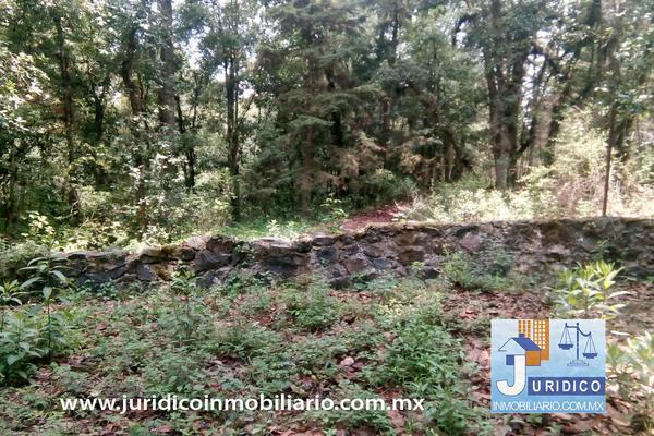 Foto de terreno habitacional en venta en  , san jacinto, atlautla, méxico, 14374200 No. 31