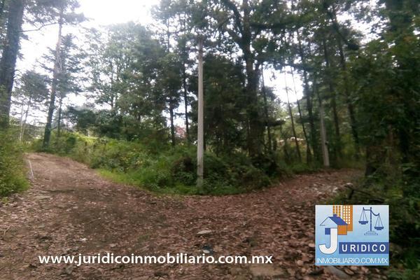 Foto de terreno habitacional en venta en  , san jacinto, atlautla, méxico, 14374200 No. 33