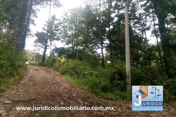 Foto de terreno habitacional en venta en  , san jacinto, atlautla, méxico, 14374200 No. 34