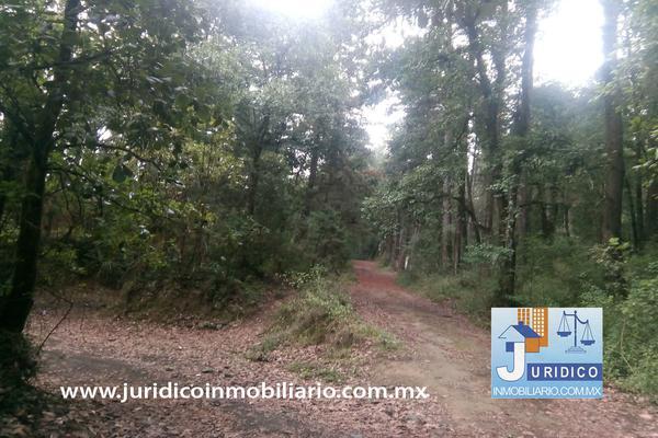 Foto de terreno habitacional en venta en  , san jacinto, atlautla, méxico, 14374200 No. 35