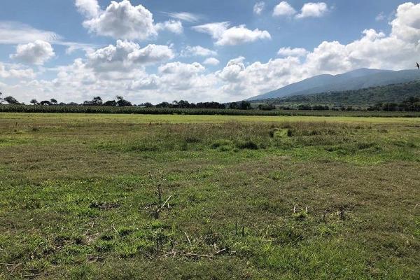 Foto de terreno habitacional en venta en san jacinto , poncitlán centro, poncitlán, jalisco, 5929610 No. 01