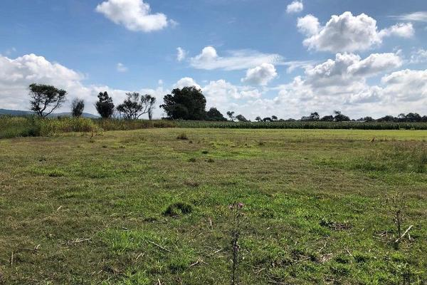 Foto de terreno habitacional en venta en san jacinto , poncitlán centro, poncitlán, jalisco, 5929610 No. 02