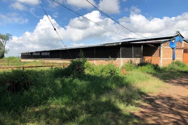 Foto de terreno habitacional en venta en san jacinto , poncitlán centro, poncitlán, jalisco, 5929610 No. 03