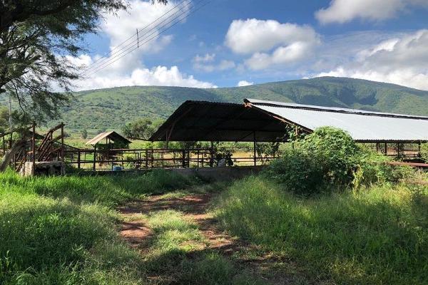 Foto de terreno habitacional en venta en san jacinto , poncitlán centro, poncitlán, jalisco, 5929610 No. 05