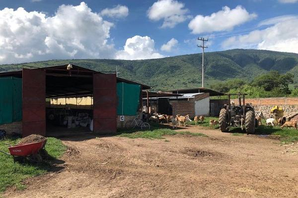 Foto de terreno habitacional en venta en san jacinto , poncitlán centro, poncitlán, jalisco, 5929610 No. 06
