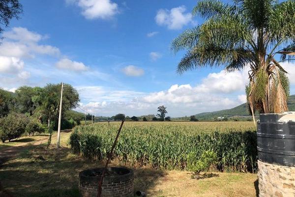 Foto de terreno habitacional en venta en san jacinto , poncitlán centro, poncitlán, jalisco, 5929610 No. 08