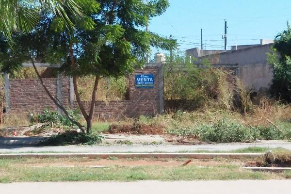 Foto de terreno habitacional en venta en  , san joachin, guasave, sinaloa, 3425015 No. 03