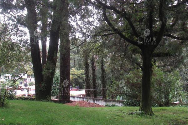 Foto de casa en venta en  , san josé de la montaña, huitzilac, morelos, 9226989 No. 03