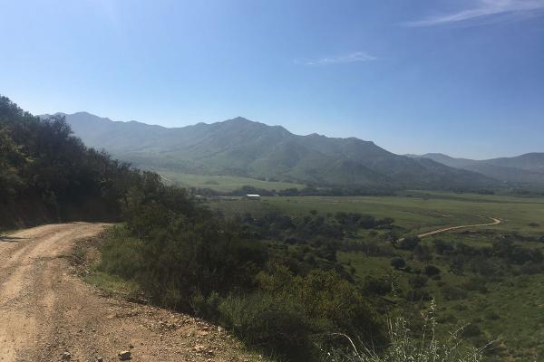 Foto de terreno habitacional en venta en san jose de la zorra , la zorra, playas de rosarito, baja california, 3217642 No. 05