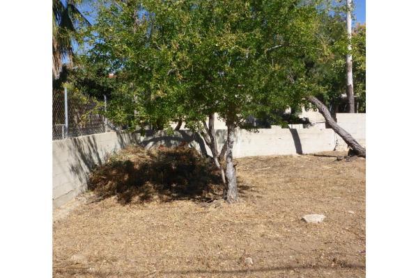 Foto de terreno habitacional en venta en  , san josé del cabo centro, los cabos, baja california sur, 7514430 No. 08