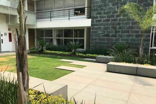 Foto de departamento en renta en  , san josé del olivar, álvaro obregón, df / cdmx, 20401746 No. 16