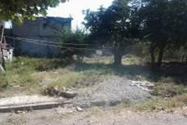 Foto de terreno habitacional en venta en  , san josé del valle, bahía de banderas, nayarit, 14024402 No. 03