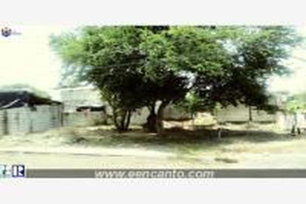 Foto de terreno habitacional en venta en  , san josé del valle, bahía de banderas, nayarit, 14024402 No. 09