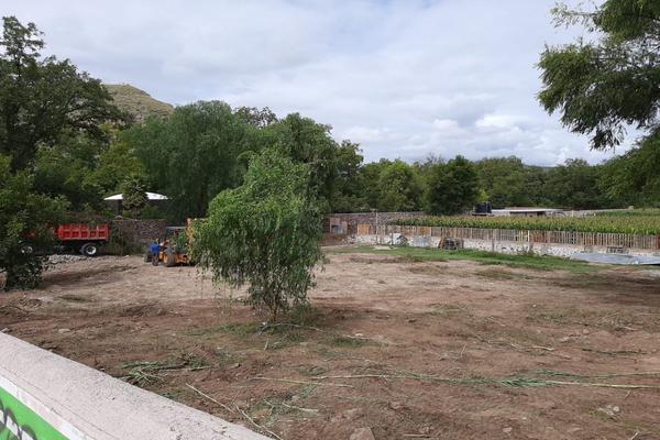 Foto de terreno habitacional en venta en  , san josé, santa maría del río, san luis potosí, 17606001 No. 06