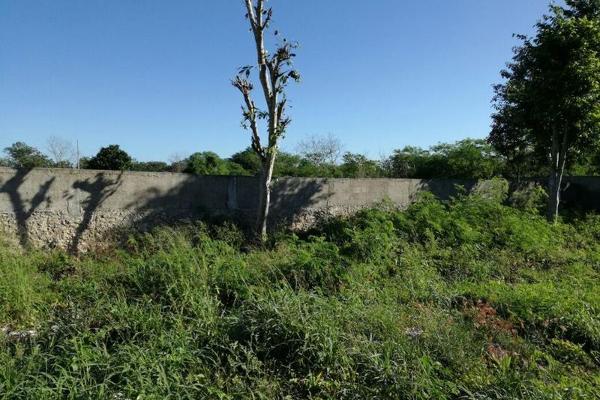 Foto de terreno habitacional en venta en  , san josé, tepoztlán, morelos, 7952951 No. 05