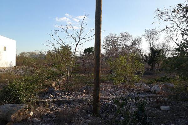Foto de terreno habitacional en venta en  , san josé, tepoztlán, morelos, 7975083 No. 02
