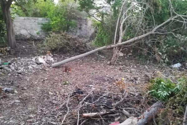 Foto de terreno habitacional en venta en  , san jose vergel, mérida, yucatán, 5677200 No. 13