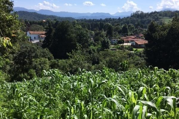 Foto de terreno habitacional en venta en san juan atezcapan , valle de bravo, valle de bravo, méxico, 3705392 No. 02