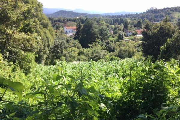 Foto de terreno habitacional en venta en san juan atezcapan , valle de bravo, valle de bravo, méxico, 3705392 No. 03