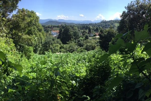 Foto de terreno habitacional en venta en san juan atezcapan , valle de bravo, valle de bravo, méxico, 3705392 No. 04