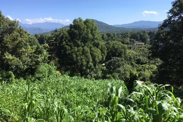 Foto de terreno habitacional en venta en san juan atezcapan , valle de bravo, valle de bravo, méxico, 3705392 No. 05
