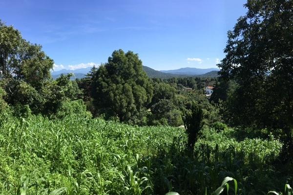 Foto de terreno habitacional en venta en san juan atezcapan , valle de bravo, valle de bravo, méxico, 3705392 No. 07