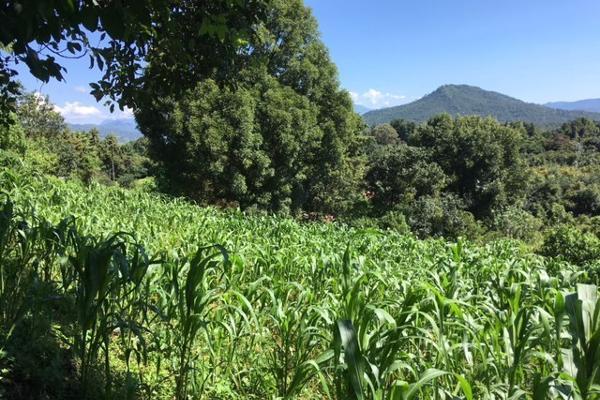Foto de terreno habitacional en venta en san juan atezcapan , valle de bravo, valle de bravo, méxico, 3705392 No. 08