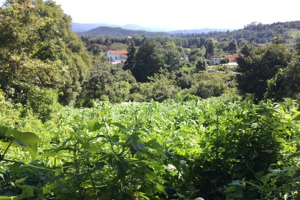Foto de terreno habitacional en venta en san juan atezcapan , san juan atezcapan, valle de bravo, méxico, 5723613 No. 04