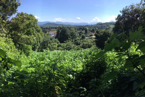 Foto de terreno habitacional en venta en san juan atezcapan , san juan atezcapan, valle de bravo, méxico, 5723613 No. 05