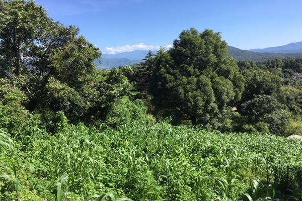 Foto de terreno habitacional en venta en san juan atezcapan , san juan atezcapan, valle de bravo, méxico, 5723613 No. 07