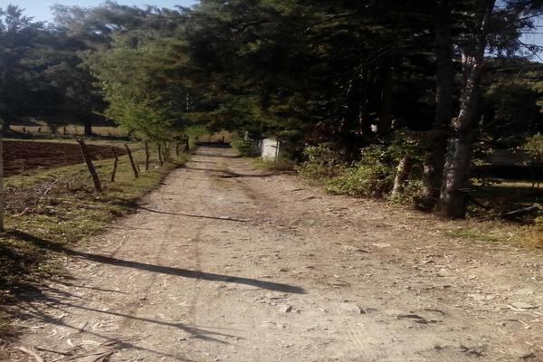 Foto de terreno habitacional en venta en san juan atezcapan , san juan atezcapan, valle de bravo, méxico, 5723763 No. 04