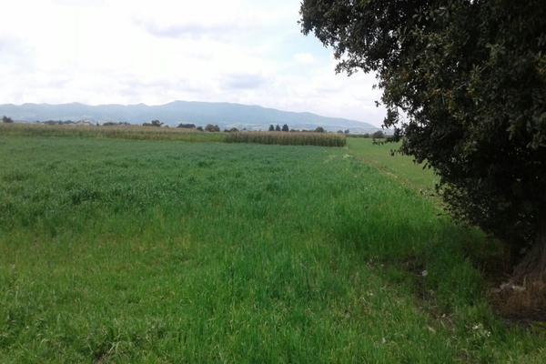 Foto de terreno habitacional en venta en  , san juan de las huertas, zinacantepec, méxico, 5677569 No. 04