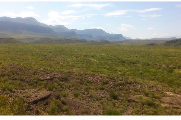 Foto de terreno habitacional en venta en  , san juan de sauceda, ramos arizpe, coahuila de zaragoza, 17786240 No. 01