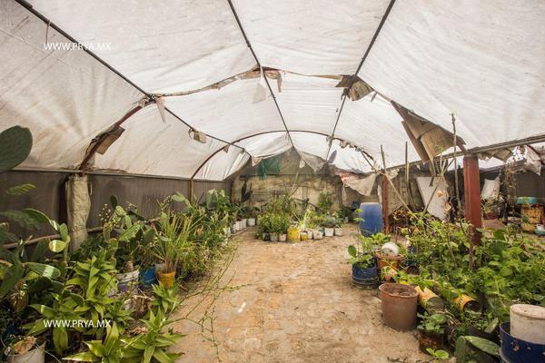 Foto de terreno habitacional en venta en san juan , las juntas, san pedro tlaquepaque, jalisco, 19375016 No. 13