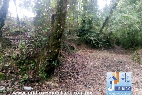 Foto de terreno habitacional en venta en  , san juan tehuixtitlán centro, atlautla, méxico, 5371448 No. 01