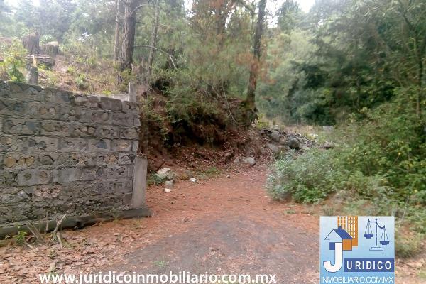 Foto de terreno habitacional en venta en  , san juan tehuixtitlán centro, atlautla, méxico, 5371448 No. 02