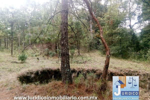 Foto de terreno habitacional en venta en  , san juan tehuixtitlán centro, atlautla, méxico, 5371448 No. 05