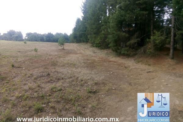 Foto de terreno habitacional en venta en  , san juan tehuixtitlán centro, atlautla, méxico, 5371448 No. 06