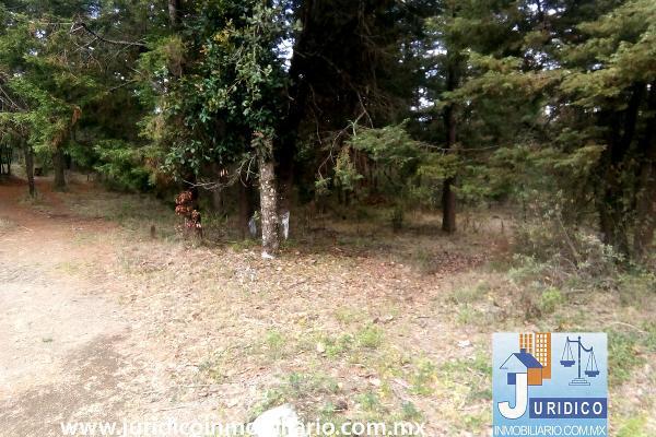 Foto de terreno habitacional en venta en  , san juan tehuixtitlán centro, atlautla, méxico, 5371448 No. 07