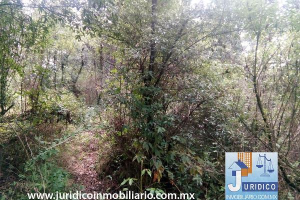 Foto de terreno habitacional en venta en  , san juan tehuixtitlán centro, atlautla, méxico, 5371448 No. 10